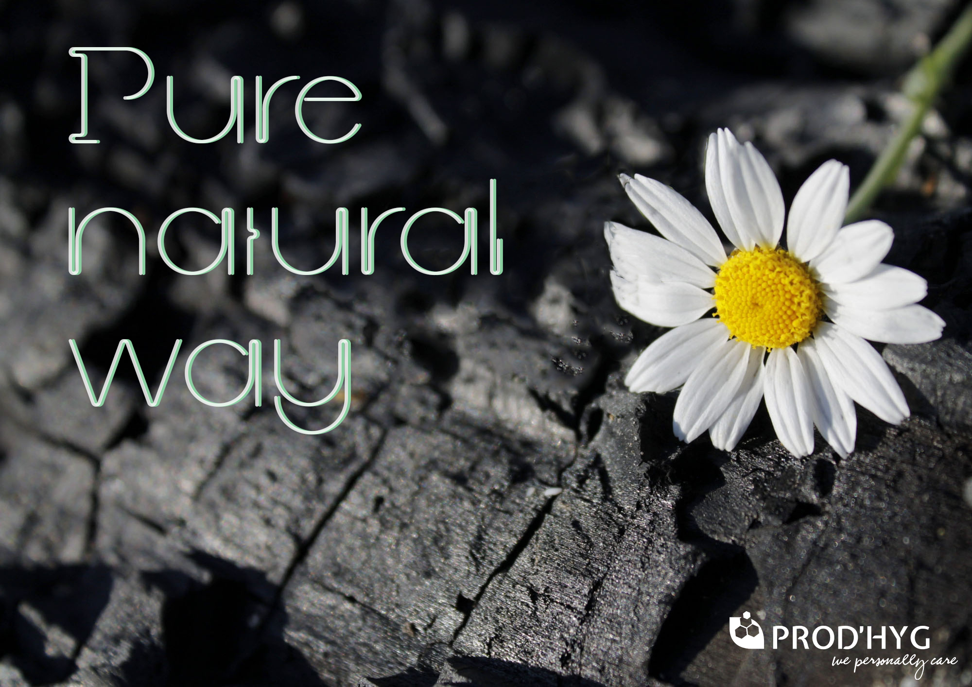 Pure natural Way